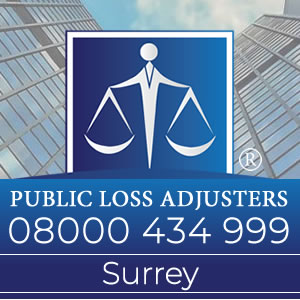 Public Loss Adjusters Surrey